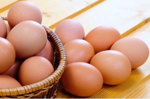 tips agar telur ayam awet